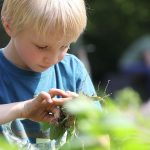 Gartenkunde