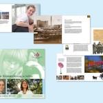 Umfangreiche Broschüre zur historischen Entwicklung der Anna von Borries Stiftung
