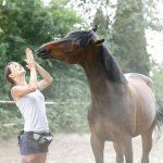Bodenarbeit gehört zum kleinen 1x1 der Pferdearbeit