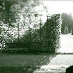 Schattenblick