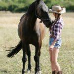 Natural Horsemanship – Pferdearbeit ist Bodenarbeit