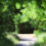 Lichtgang – illustrative Fotogafie in malerischer Technik