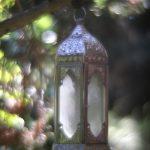 Wunschlampe – illustrative Fotogafie in malerischer Technik