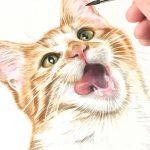 Tierzeichnung – Illustration einer Katze für eine Familiengalerie